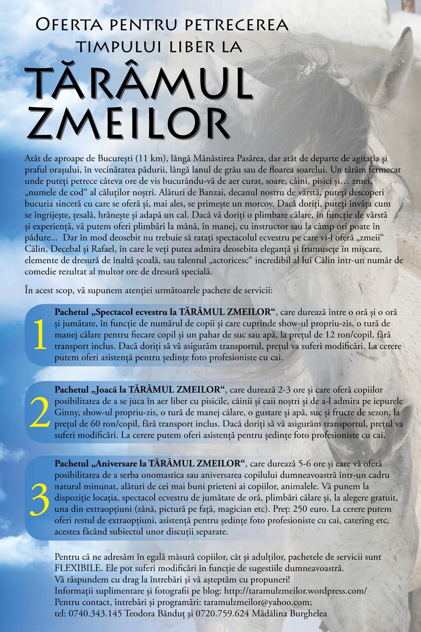 newsletter 7
