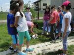 after school cei trei muschetari (25)