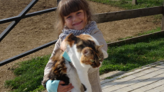 Gradinita sweet little baby 13 14 octombrie 2014 (36)