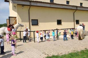 Kids Palace in vizita la Zmei (24)