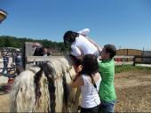 Primaria Sectorul 2 - Centrul de Zi pentru Copiii cu Dizabilitati (20)