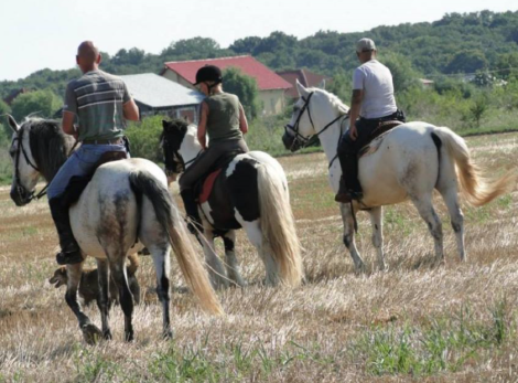 weekend-ul 9-10 august vino la Taramul Zmeilor (3)
