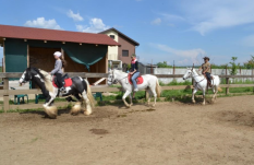zi de cai - hai sa invatam sa calarim !! (12)
