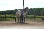 zi de cai - hai sa invatam sa calarim !! (15)