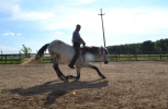 zi de cai - hai sa invatam sa calarim !! (17)