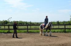 zi de cai - hai sa invatam sa calarim !! (2)