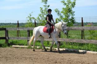zi de cai - hai sa invatam sa calarim !! (3)