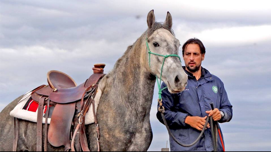 programul caii romaniei (1)