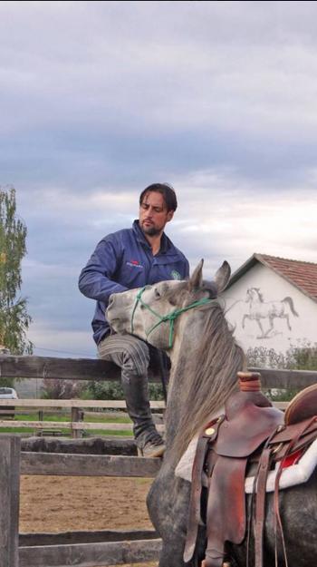 programul caii romaniei (3)